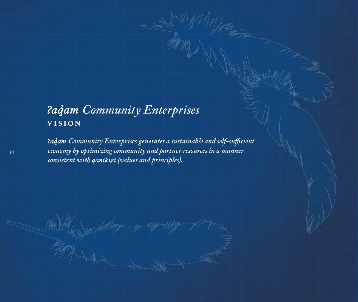 aq  am Community Enterprises v ision    aq  am Community Enterprises generates a sustainable and self-sufficient 14  eco...