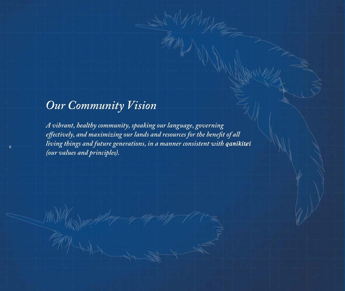 Our Community Vision 6  A vibrant, healthy community, speaking our language, governing effectively, and maximizing our lan...